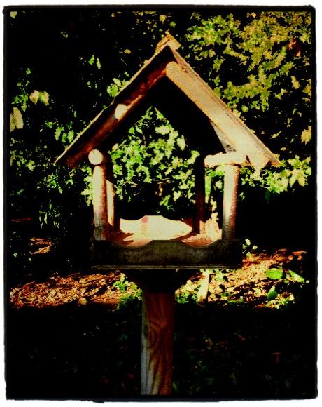 birdhouse@regency garden